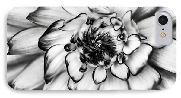 Zinnia Close Up In Black And White IPhone Case