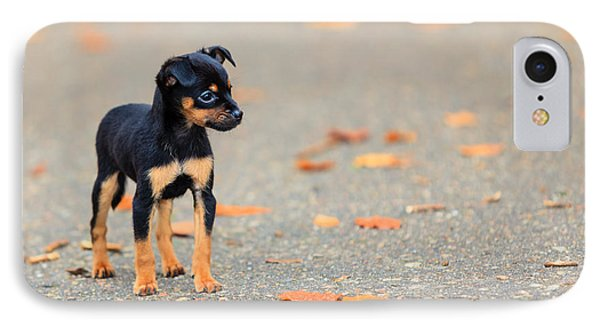 Puppies iPhone 8 Case - Animals Homeless. Little Dog Cute Puppy by Voyagerix