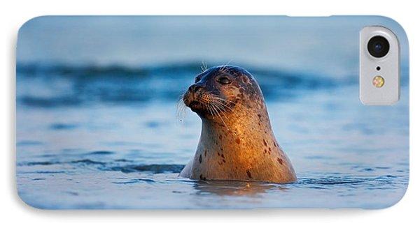 French iPhone 8 Case - Atlantic Grey Seal, Halichoerus Grypus by Ondrej Prosicky