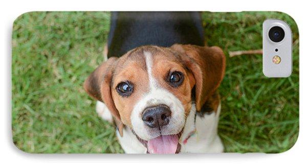 Puppies iPhone 8 Case - Beagle Puppy Sitting On Green Grass by Mr.es