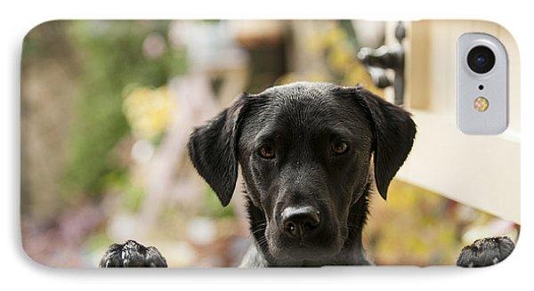 Puppies iPhone 8 Case - Black Labrador by Claire Norman