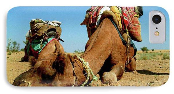 Egyptian iPhone 8 Case - Camel Sleeping During A Desert Safari by Paul Prescott