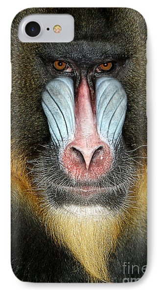Africa iPhone 8 Case - Close Up Portrait Of Baboon Monkey by Reinhold Leitner