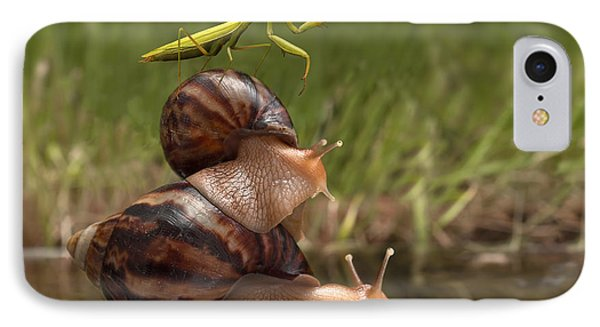 Small iPhone 8 Case - Closeup Praying Mantis Riding On Snails by Torook