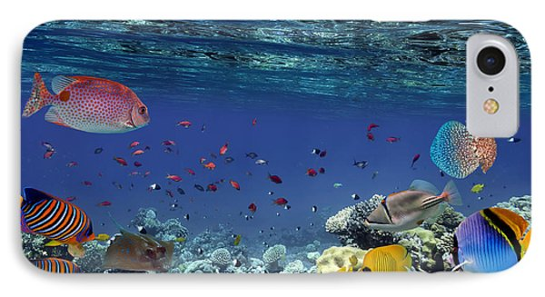 Egyptian iPhone 8 Case - Colorful Reef Underwater Landscape With by Vlad61
