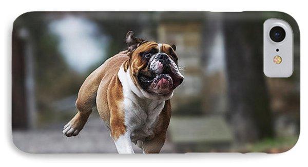 Puppies iPhone 8 Case - Crazy English Bulldog Puppy Running by Best Dog Photo