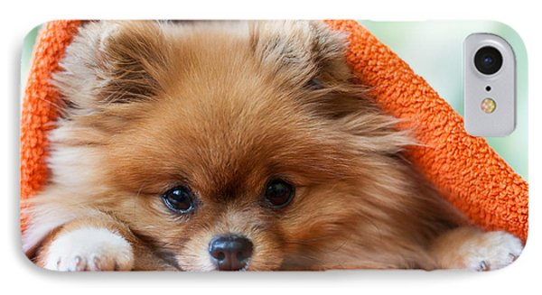 Small iPhone 8 Case - Cute And Funny Puppy Pomeranian Smiling by Barinovalena