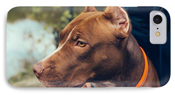 Puppies iPhone 8 Case - Cute Beautiful Dog Pit Bull by Irina Bg