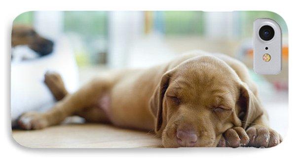 Puppies iPhone 8 Case - Cute Little Rhodesian Ridgeback Puppy by Nancy Dressel