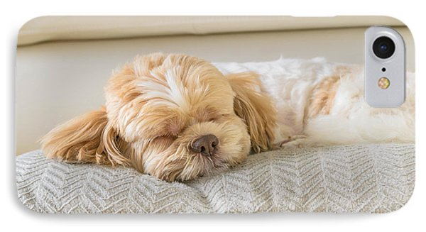 Puppies iPhone 8 Case - Dog Sleeping Comfortably On Big Soft by 632imagine