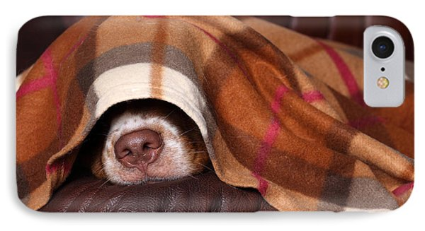 Puppies iPhone 8 Case - Dog Sleeps Under The Blanket by Ivanova N