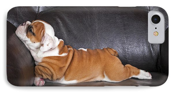 Puppies iPhone 8 Case - English Bulldog Puppy Relaxing On Black by B.stefanov