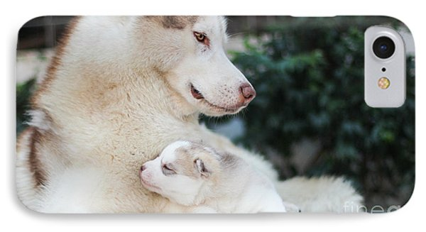 Puppies iPhone 8 Case - Family Dog by Framsook