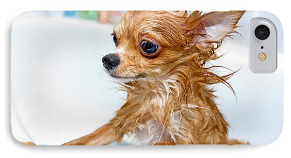 Puppies iPhone 8 Case - Funny Wet Chihuahua Dog In Bathroom by Art Nick