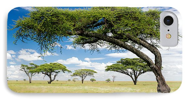 Africa iPhone 8 Case - Green Trees In Africa, After The Rainy by Shuttjd