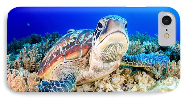 Egyptian iPhone 8 Case - Green Turtle On The Sea Bed by Richard Whitcombe