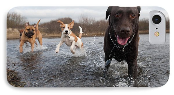 Puppies iPhone 8 Case - Labrador Retriever And Friends Having by Eric Gevaert