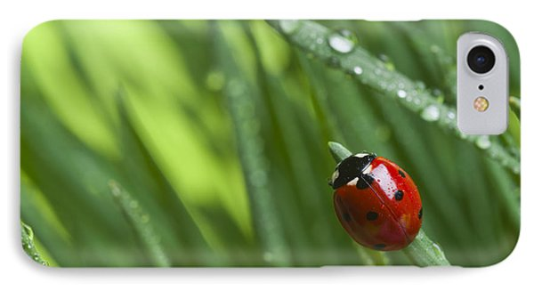 Small iPhone 8 Case - Ladybird On Grass by Didecs