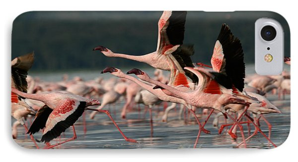 Africa iPhone 8 Case - Lesser Flamingos At Lake Nakuru by Steffen Foerster