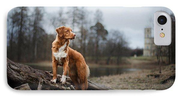 Puppies iPhone 8 Case - Nova Scotia Duck Tolling Retriever Dog by Dezy