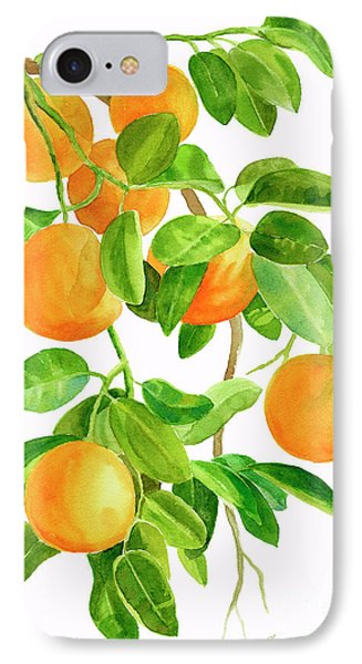 Fruit iPhone 8 Case - Oranges On A Branch by Sharon Freeman
