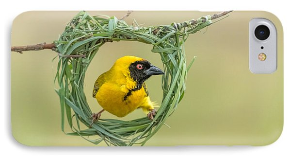 Africa iPhone 8 Case - Southern Masked Weaver Building Nest by Tobie Oosthuizen