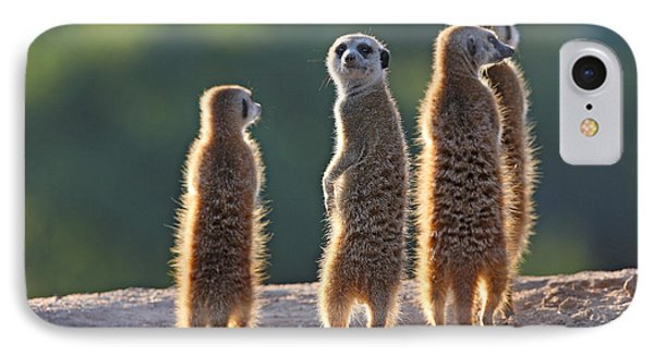 Small iPhone 8 Case - Surricate Meerkats Standing Upright by Erwin Niemand