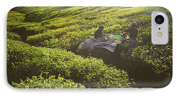 Beauty In Nature iPhone 8 Case - Tea Pickers Agriculture Growth Harvest by Rawpixel.com
