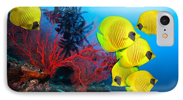 Egyptian iPhone 8 Case - Underwater Image Of Coral Reef And by Frantisekhojdysz