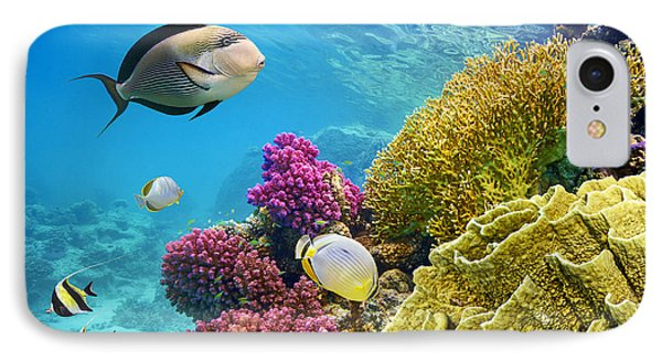 Egyptian iPhone 8 Case - Underwater Scene With Coral Reef And by John walker