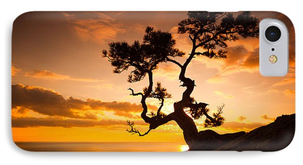 Beauty In Nature iPhone 8 Case - Zen Is A Tree On The Cliff Rocks And by Yarygin