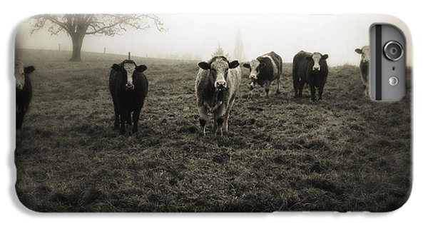 Rural Scenes iPhone 8 Plus Case - Livestock by Les Cunliffe