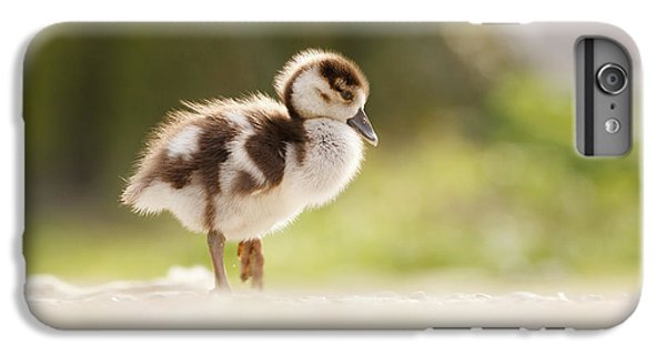 Gosling iPhone 8 Plus Case - All Alone - Egyptean Gosling And A Tree by Roeselien Raimond