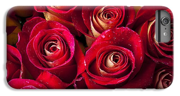 Rose iPhone 8 Plus Case - Boutique Roses by Garry Gay