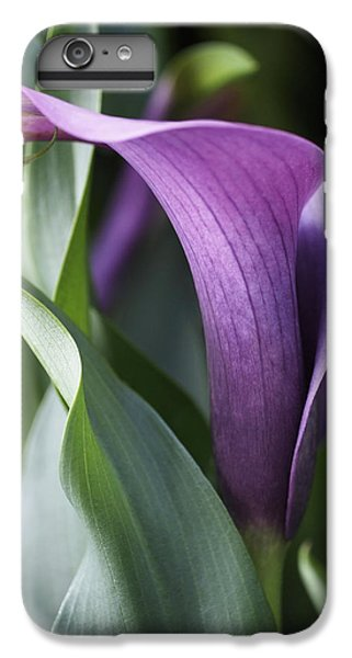 Lily iPhone 8 Plus Case - Calla Lily In Purple Ombre by Rona Black