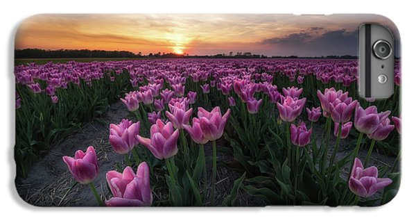 Tulip iPhone 8 Plus Case - Field Of Tulips by Amada Terradillos S.