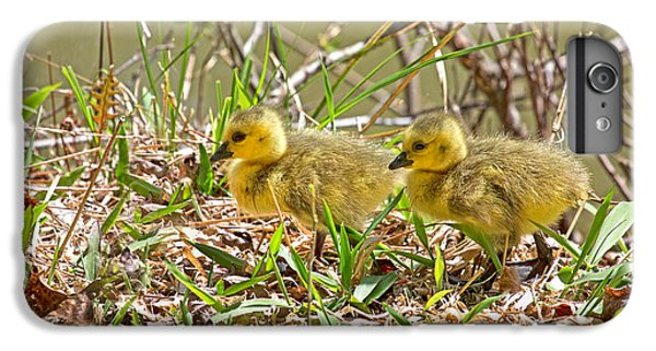 Gosling iPhone 8 Plus Case - Little Ones by Betsy Knapp