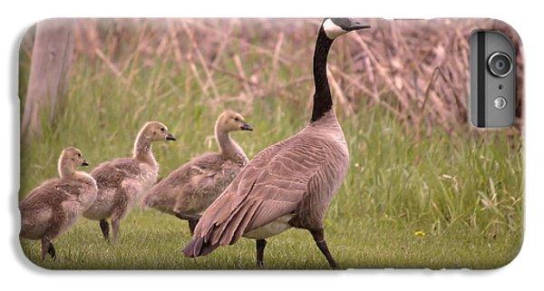 Gosling iPhone 8 Plus Case - Goslings On A Walk by Jeff Swan