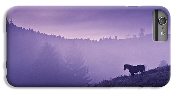 Horse iPhone 8 Plus Case - Horse In The Mist by Yuri Santin