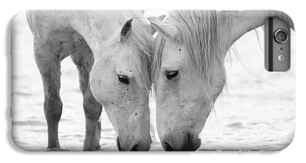 Horse iPhone 8 Plus Case - In The Water At Dawn II by Carol Walker