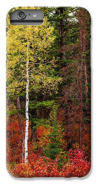 Shrub iPhone 8 Plus Case - Lone Aspen In Fall by Chad Dutson