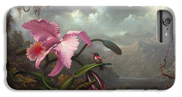 Orchid iPhone 8 Plus Case - Orchid And Hummingbir by Martin Johnson Heade
