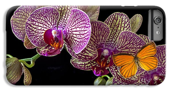 Orchid iPhone 8 Plus Case - Orchid And Orange Butterfly by Garry Gay