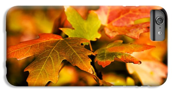 Shrub iPhone 8 Plus Case - Reds by Chad Dutson