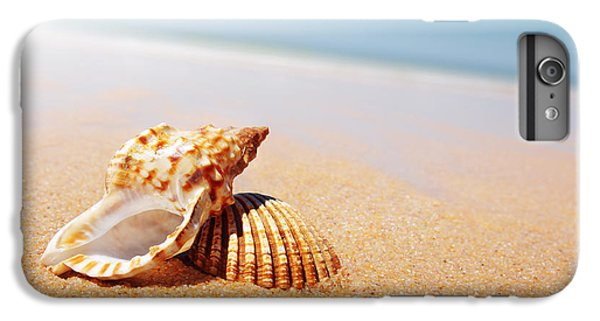 Beach iPhone 8 Plus Case - Seashell And Conch by Carlos Caetano