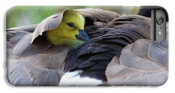 Gosling iPhone 8 Plus Case - Snuggling Gosling by Ken Archer