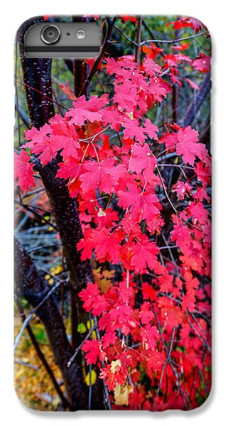 Shrub iPhone 8 Plus Case - Southern Fall by Chad Dutson