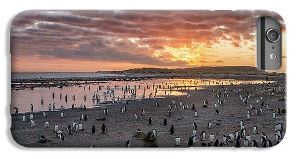 Sand iPhone 8 Plus Case - Sunrise At Sea Lion by Joan Gil Raga
