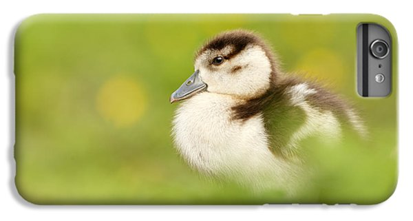 Gosling iPhone 8 Plus Case - The Gosling In The Grass by Roeselien Raimond