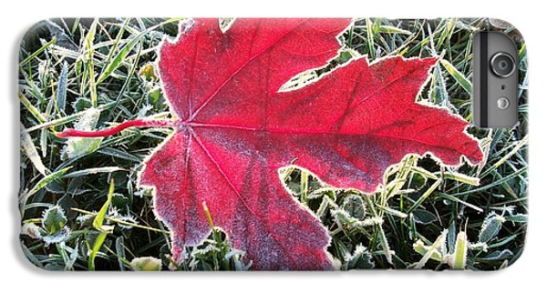 iPhone 8 Plus Case - The Leaf by Red Cross